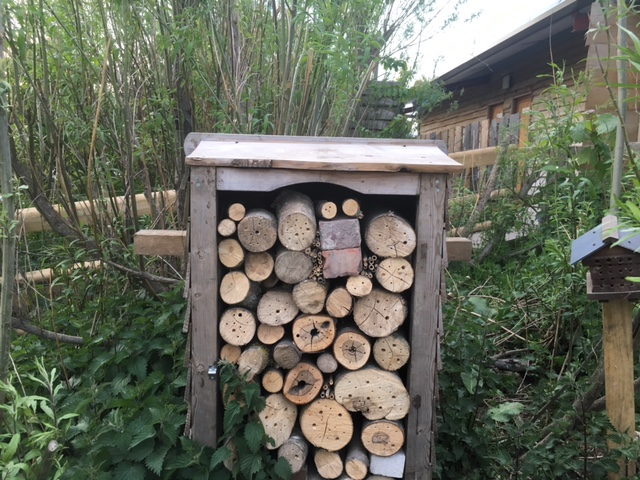 bee hotel large