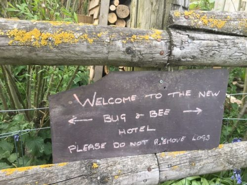 bee hotel notice